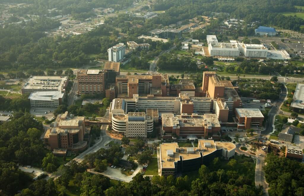 Arial of Medical Complex by Kristen Bartlett-2005