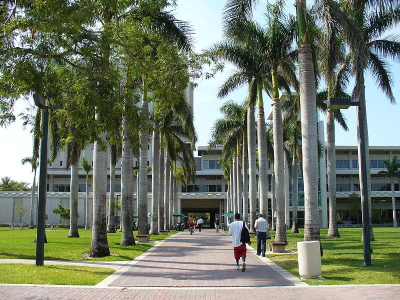 university-of-miami-healthcare-administration-degree