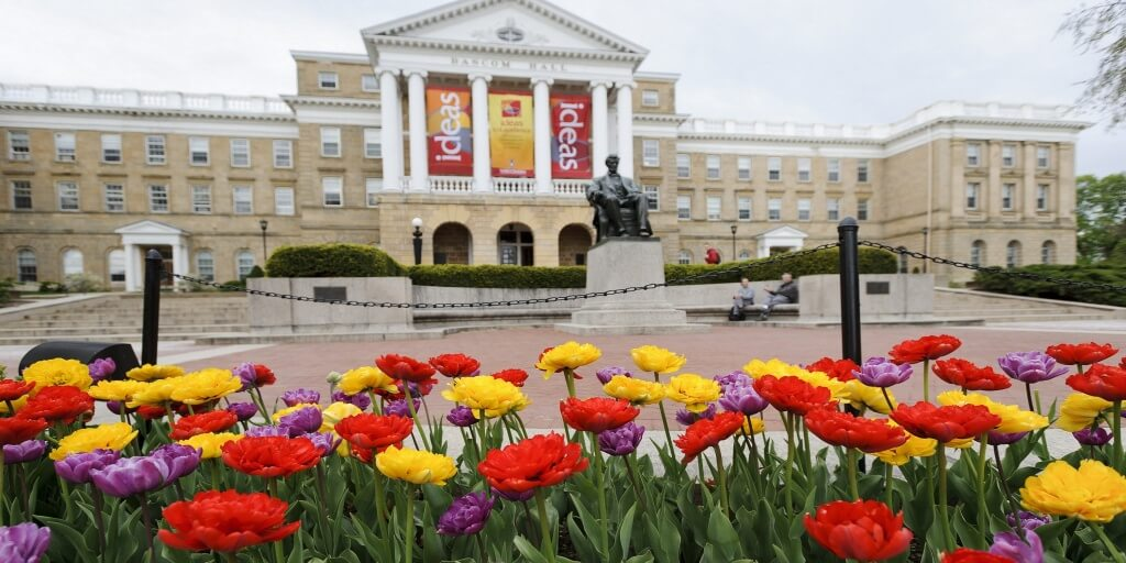 university-of-wisconsin-bachelor-of-science-in-health-information-management-and-technology