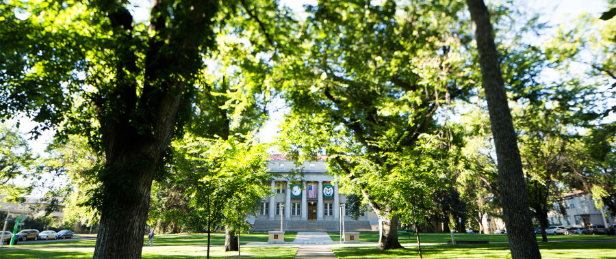 colorado-state-university-online-master-of-science-m-s-in-food-science-and-nutrition
